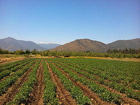 Agricultura y Suelo