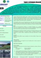 bio_929-824x1024