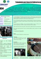 bio_934-818x1024